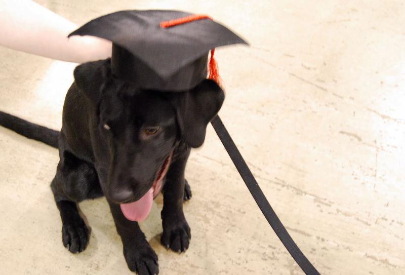 Graduation0001_11