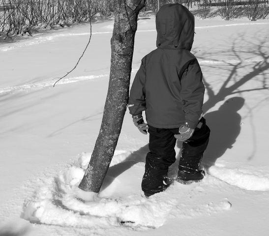 Winter0001_2